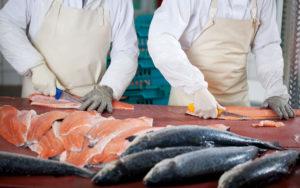 Integral Interiors | Totaalinrichting, interieur en koeltoonbanken voor viswinkels