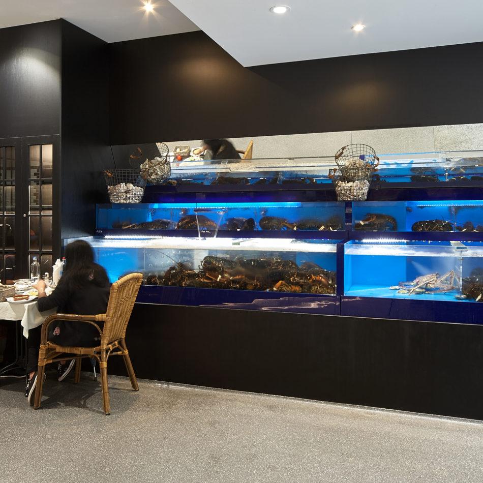 homarium de schelp integral interiors vis
